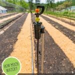 Pinterest pin for the best garden watering practices. Image of a sprinkler set up in a large market garden.