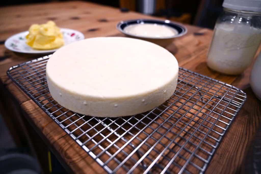 A wheel of homemade farmhouse cheddar cheese.