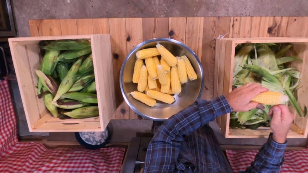 Fresh corn being shucked.
