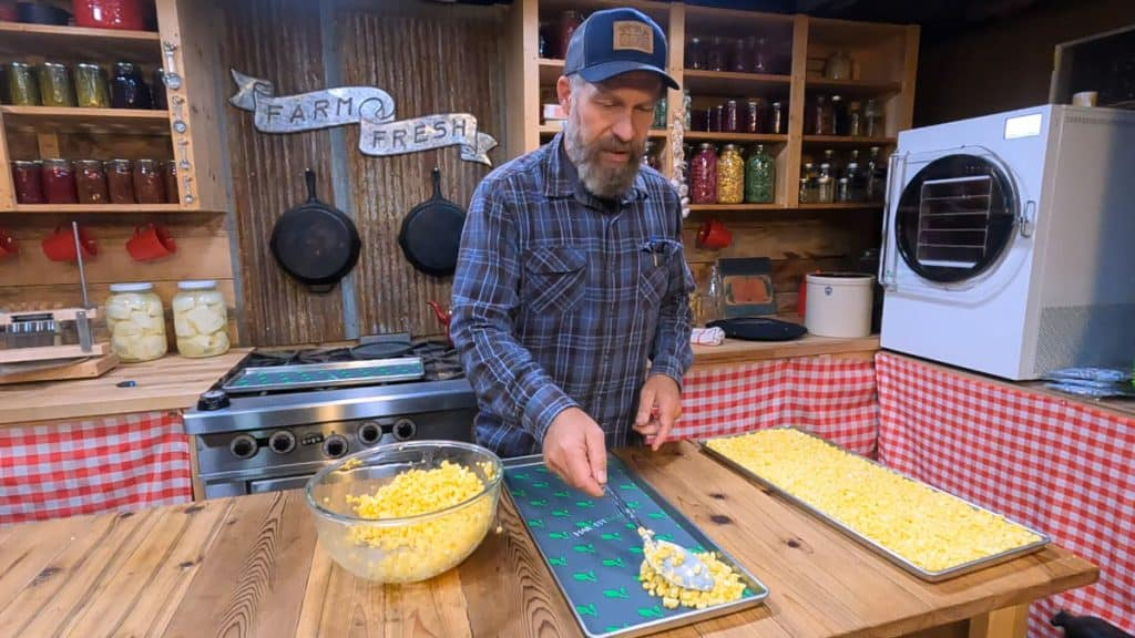 A man spreading fresh corn onto trays for freeze drying.