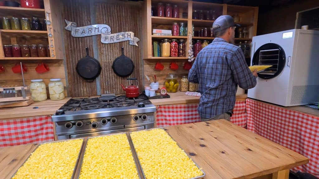 A man putting trays of fresh corn into a freeze dryer.